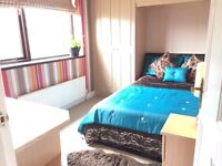 >> Free Beer << As welcome package for a doule bedroom in shared professional house