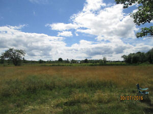 116 acres woodlot with 500 feet frontage