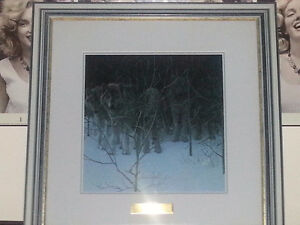 Clear Night - Wolves Print