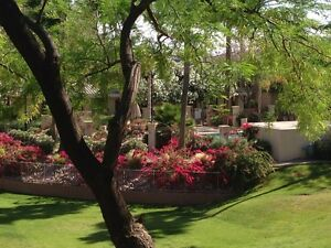 Desert Breeze Phoenix 1 Bedroom Condo