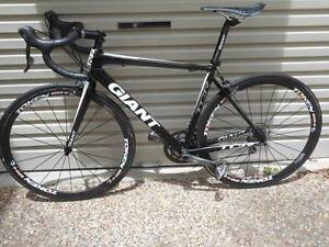 Giant TCR Alliance Carbon Racing Road Bike 50 cm Carbon Wheels Cleveland Redland Area Preview
