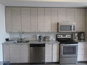 1BR + DEN: NEW, BRIGHT, FURNISHED SUBLET