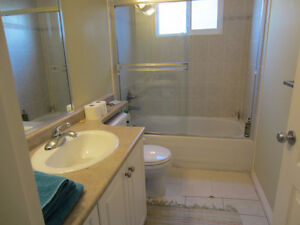 clean suite for daily rent
