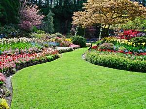 Gardening Maintence