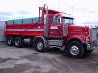 Chauffeur camion 12 roues dompeur