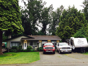 + FOR RENT: Beautiful EAST Abbotsford / McMillan area House +
