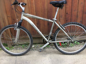 21 Speed Infinity ( Premier ) Mountain Bike