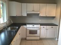 Fully renovated 3 bedroom semi-detached in North End