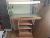 3ft fish tank/aquarium