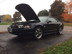 2003 Ford Mustang 100th centennial edition LOW ORIGNAL KMS