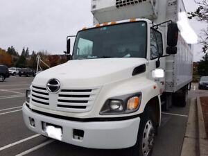 Hino 338 reefer truck for sale