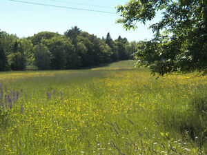 Rural building lot wanted Peterborough,Lakefield,Bancroft,