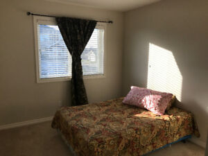 Room available for Rent (Stonebridge)