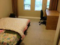 Large Furnished Bedroom For Female - Available now!