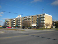 Spacious 1 bedroom Apartment in Amherstview