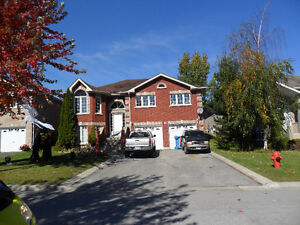 2 LARGE EXECUTIVE HOME FOR RENT