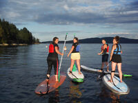 50% off Paddle board Morning & Evening Tours in June