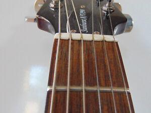 HAMER SATP90 Stratford Kitchener Area image 3