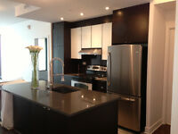Condo Rouge a louer/for Rent! 3 1/2 Electros Inclus