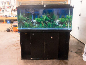 Aquarium - Fish Tank  With Stand, Canopy & Lights - 55 Gallon