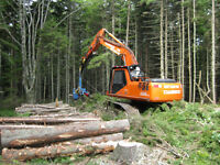 Forestry Equipment Operator