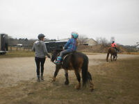 Horse riding for kids of all ages IN London