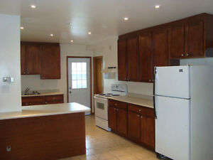 UOFW, 4BEDROOM ON RANDOLPH, RENOVATED, OPEN CONCEPT NEW KITCHEN!