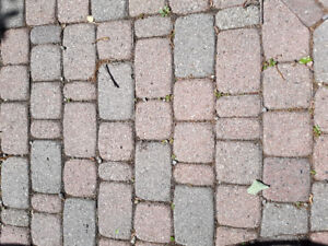 Wanted: used classico walkway pavers