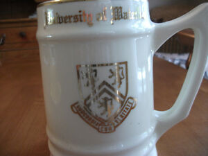 UNIVERSITY OF WATERLOO MUG