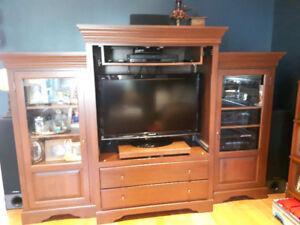 Meuble télé en bois avec bibliothèque