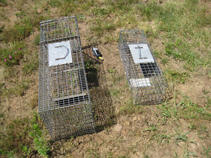 LIVE ANIMAL TRAP GREAT FOR SKUNKS, SM. RACOONS ETC.