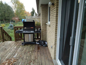 Room for rent in home near UW and Accelerator Centre Kitchener / Waterloo Kitchener Area image 6