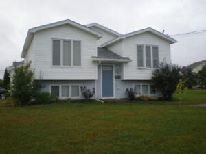 Moncton North End- Top half of house- Own yard, driveway, deck,