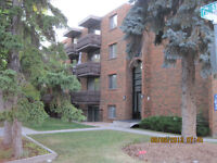 Mount Royal 1 BdRm for July 1 ... Great location!