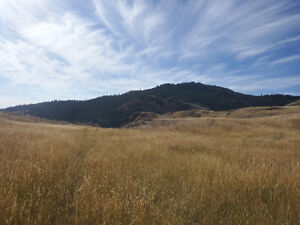 Lake & Mountain View with 35+ Acres MLS#162899