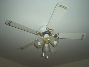 White Ceiling Fan with Gold Tint