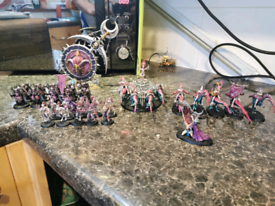 Fully painted 1000 point hedoinites of slaanesh army and battletome