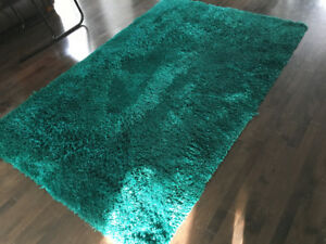 Gently used 8' by 5' Pier One shag rug