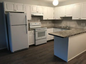 Fully Renovated! Spacious 2 Bedroom Apartment For Rent