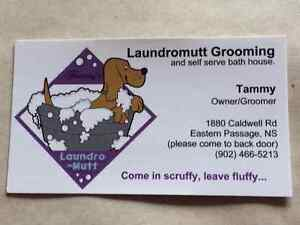 Dog grooming and self service