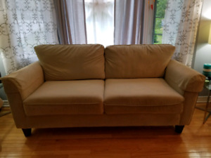 Couch/sofa and love seat