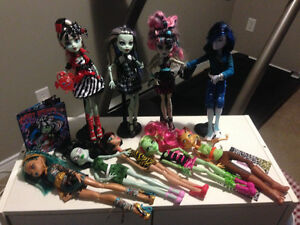 Monster High Dolls with Accessories
