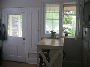 Sweet 2 story Downtown 1 bedroom apartment