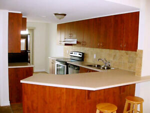 Park view 1400sqft Condo at Centre of Orleans, Move in ready!