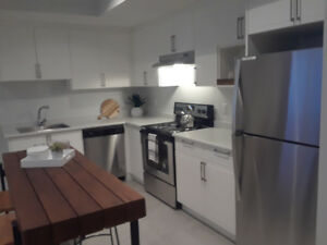 Brand new 1 basement suite in Pacific Heights (South Surrey)