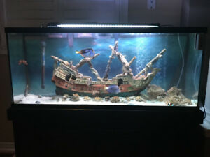 Saltwater fish tank for sale in Mississauga