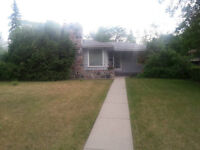 Walk to U of S basement suite for rent