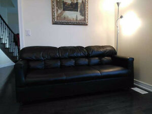 Sofa & Love seat for sale