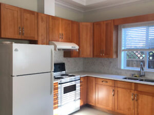 Brand New Suite in Central Richmond + Utilities