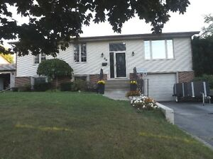 3+1 bedroom elevated bungalow - 98 Nicholson Cres, Amherstview Kingston Kingston Area image 1